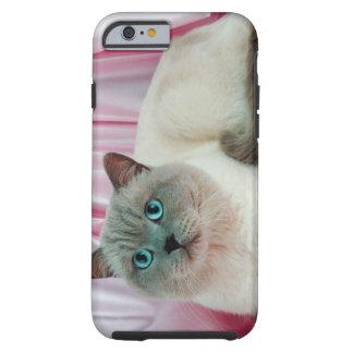 Portrait of cat 4 tough iPhone 6 case