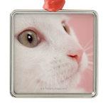 Portrait of cat christmas tree ornament