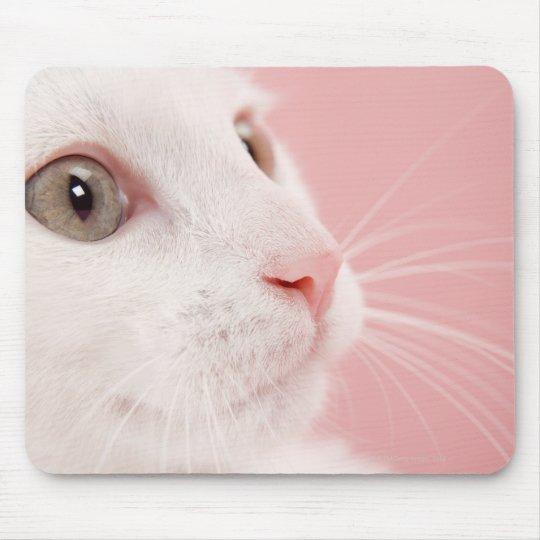 Portrait of cat mouse pad