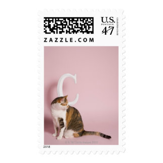 Portrait of cat postage