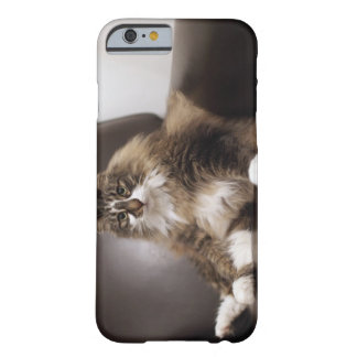 Portrait Of Cat Sitting In Chair Barely There iPhone 6 Case