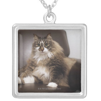 Portrait Of Cat Sitting In Chair Square Pendant Necklace