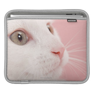 Portrait of cat sleeves for iPads