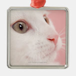 Portrait of cat square metal christmas ornament