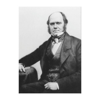 Portrait of Charles Darwin, 1854 Canvas Print