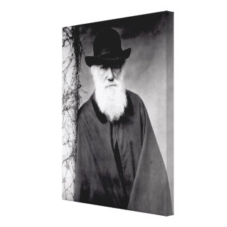 Portrait of Charles Darwin  1881 Canvas Print