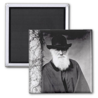 Portrait of Charles Darwin  1881 Magnet
