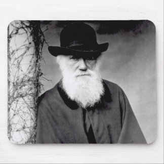 Portrait of Charles Darwin  1881 Mouse Pad