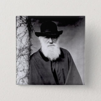 Portrait of Charles Darwin  1881 Pinback Button