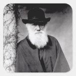 Portrait of Charles Darwin  1881 Square Sticker