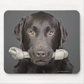 Portrait of chocolate labrador mouse pad