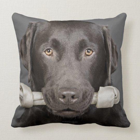 Portrait of chocolate labrador throw pillow