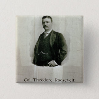 Portrait of Colonel Theodore Roosevelt (litho) Pinback Button