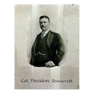 Portrait of Colonel Theodore Roosevelt (litho) Postcard