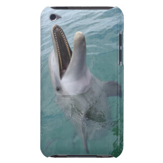 Portrait of Common Bottlenose Dolphin, Caribbean Barely There iPod Covers