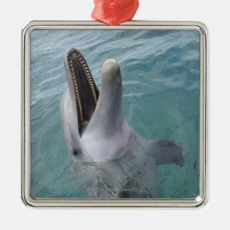 Portrait of Common Bottlenose Dolphin, Caribbean Metal Ornament