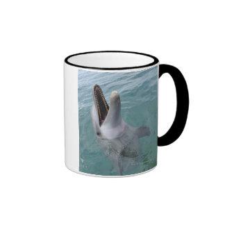 Portrait of Common Bottlenose Dolphin, Caribbean Mug