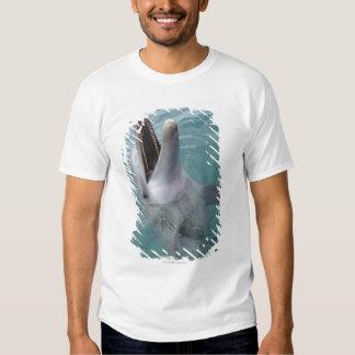 Portrait of Common Bottlenose Dolphin, Caribbean T-Shirt