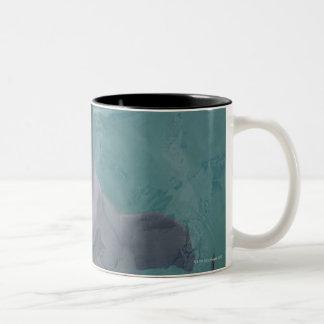 Portrait of Common Bottlenose Dolphin, Caribbean Two-Tone Coffee Mug