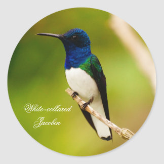 Portrait of Contemplation Round Stickers