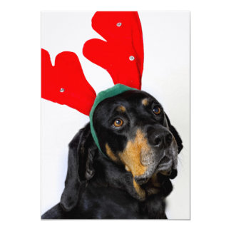 Portrait of Coonhound dog, wearing red antlers Card