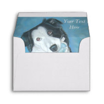 portrait of cute border collie dog envelope