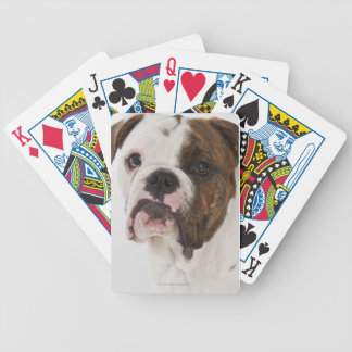Portrait of cute Bulldog pup Bicycle Playing Cards