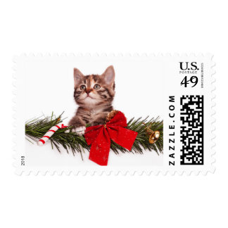 Portrait Of Cute Christmas Kitten Postage