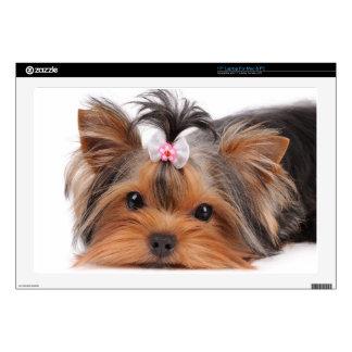 Portrait of cute puppy laptop decals