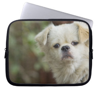 Portrait of Dog 2 Laptop Computer Sleeves