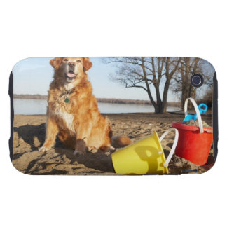 Portrait of dog at beach with sand toys, Ottawa, Tough iPhone 3 Cover