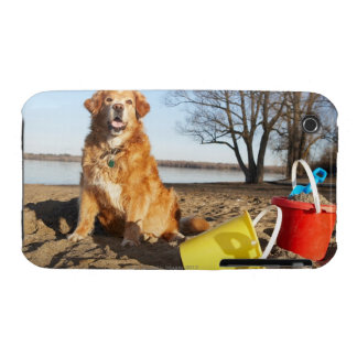 Portrait of dog at beach with sand toys, Ottawa, Case-Mate iPhone 3 Cases