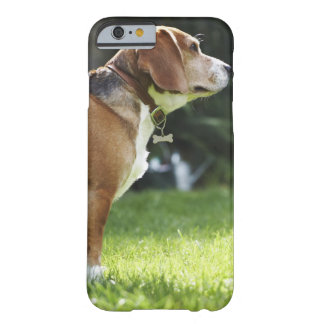 Portrait of Dog Barely There iPhone 6 Case