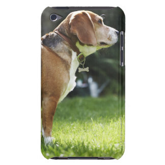 Portrait of Dog Case-Mate iPod Touch Case