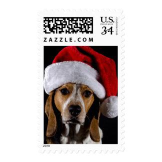 Portrait of dog hound wearing Christmas hat Postage