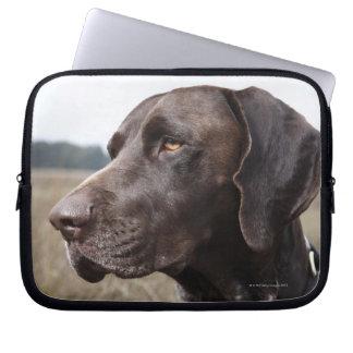 Portrait of Dog, Houston, Texas, USA Laptop Sleeve