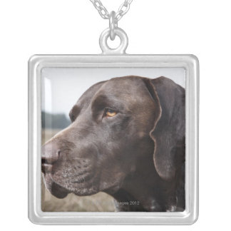 Portrait of Dog, Houston, Texas, USA Silver Plated Necklace