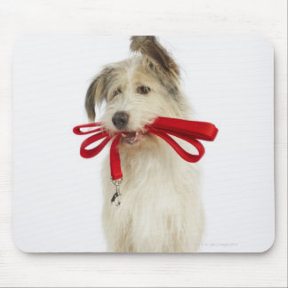 Portrait of Dog with Leash Mouse Pad