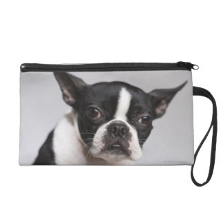Portrait of dog wristlet
