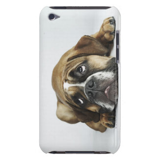 Portrait of Dorset Old Tyme Bulldog iPod Touch Cover