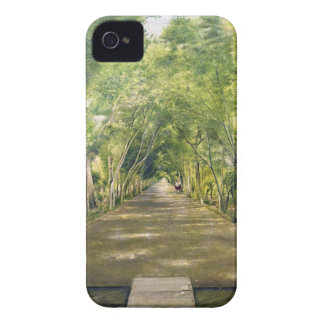 Portrait of Duchamp hills of ol Dushan Tappe iPhone 4 Cover