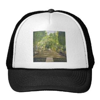 Portrait of Duchamp hills of ol Dushan Tappe Hat