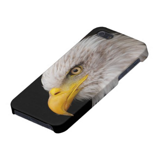 Portrait of eagle cover for iPhone SE/5/5s