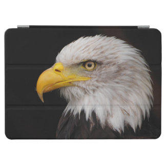 Portrait of eagle iPad air cover