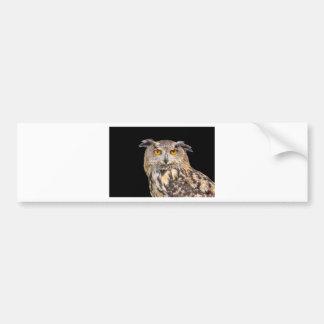 Portrait of eagle owl on black background bumper sticker