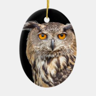 Portrait of eagle owl on black background ceramic ornament