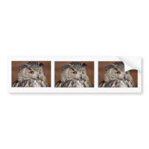Portrait of Eurasian Eagle-Owl Bumper Sticker
