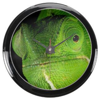 Portrait Of Flap-Necked Chameleon Aquarium Clocks