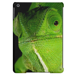 Portrait Of Flap-Necked Chameleon iPad Air Cover