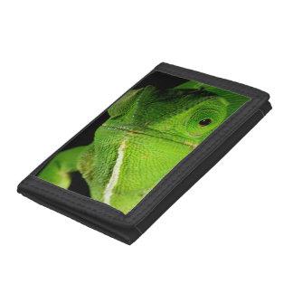 Portrait Of Flap-Necked Chameleon Tri-fold Wallet